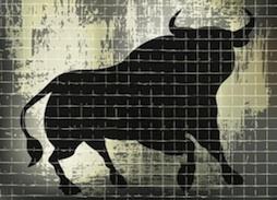 stock-market-bull