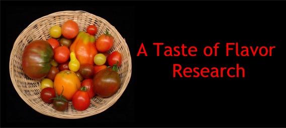 tomato falvor research