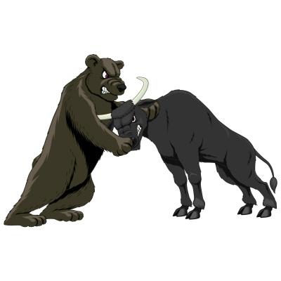 combat bull_bear_site