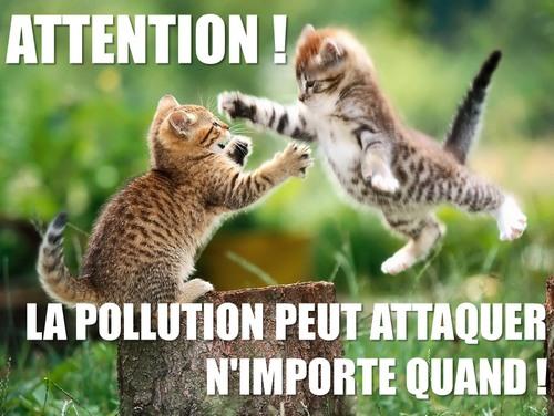 attention la pollution attaque