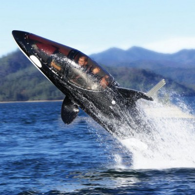 Killer-Whale-Submarine-2