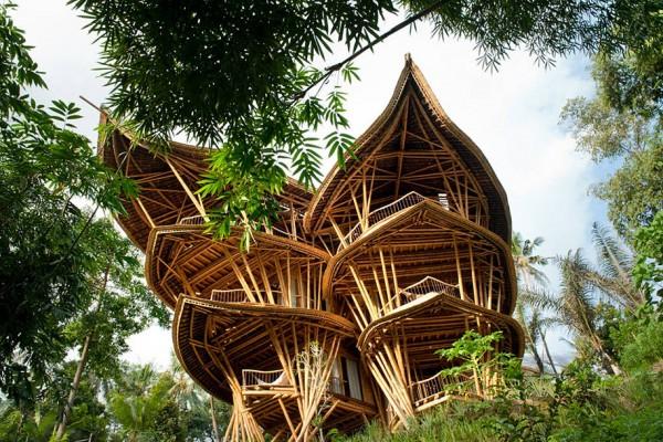ibuku-bamboo-4