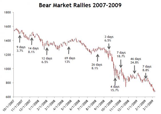 bear m