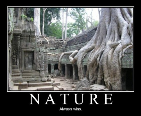 nature-always-win