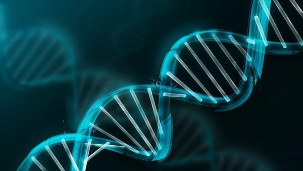 genome-objectifeco
