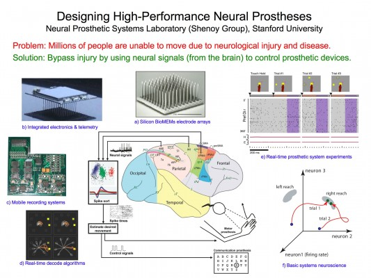 cognitive neural prosthesis stanford